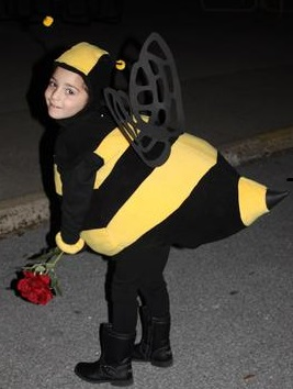 A cat and a mouse and a bumblebee homemade bee costume solutioingenieria Choice Image