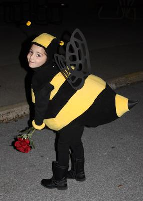 Carrington the Bee!