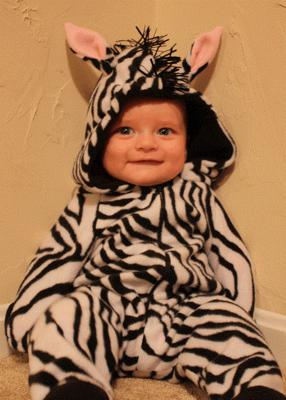 Jacob the Zebra!