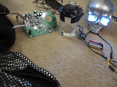 The speaker system inside the skulls (The glass helps amplify the sound.)