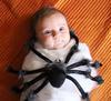 Itsy Bitsy Spider Hug